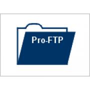 ProFTP (FTP клиент для Windows) 3.1