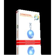 Domenina 2.1 Начальная