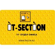 IT-SECTION Управление IT-специалистами и программистами 2011...