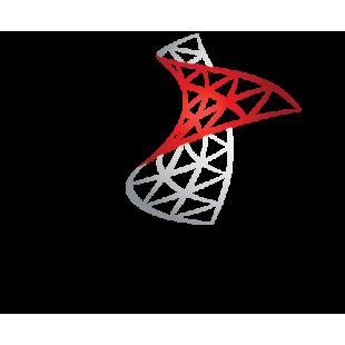 SQL Server 2017 Standard Russian Open License