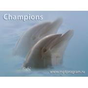 Champions для бюджетных организаций