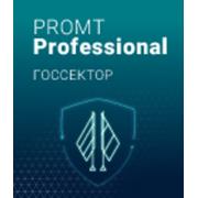 PROMT Professional Госсектор 19