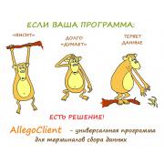 AllegroClient-prof 1.0