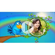 Шаблоны слайд-шоу Веселые птички