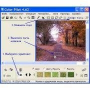 Color Pilot 4.8