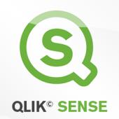 Qlik Sense Analyzer Users